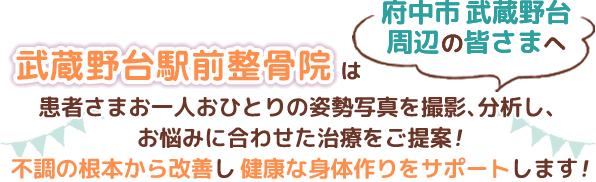 府中市武蔵野台駅周辺の皆様へ 不調の根本から改善し健康な身体作りをサポート!